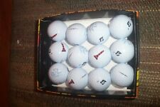 2 dozen BRAND NEW Bridgestone E6 Soft golf balls White the first tee cleveland