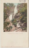 Catskills Mountains New York  Kaaterskill Falls  Vintage Postcard- 1905