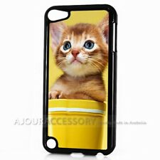 ( For iPod Touch 6 ) Back Case Cover AJ11297 Cute Pussy Cat