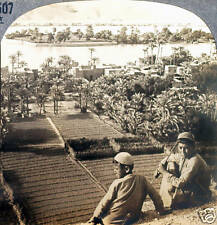 Keystone Stereoview Location of the Garden of Eden ?, IRAQ from 1930's T600 Set