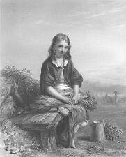 PRETTY YOUNG CUTE GIRL WOMAN SITS BY HAY FIELD FARM ~ 1864 Art Print Engraving