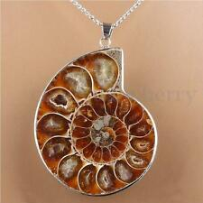 Hot Madagascar Sea Natural Druzy Ammonite Slice Shell Gemstone Pendant Necklace