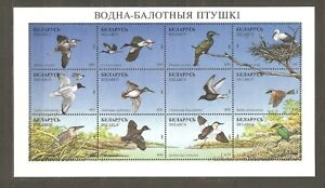 Belarus: full sheet of 12 mint stamps, local birds, 1996, Mi#179-190, MNH.
