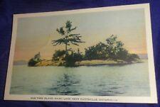 BR2071 Vtg 1934 One Tree Island Fairy Lake Huntsville Postcard PC #14