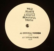 WILD BEASTS A SIMPLE BEAUTIFUL TRUTH RUG591T DJRUM LONE & EAST INDIA YOUTH RMXS
