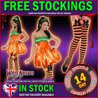 HALLOWEEN SEXY FEVER PUMPKIN + STOCKINGS ORANGE/BLACK + BOW UK 8 10 12 14 16 18