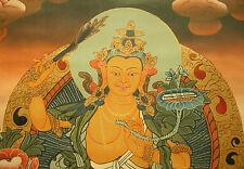 TOLLER Buddha THANGKA Manjusri Herr der Weisheit NEPAL!