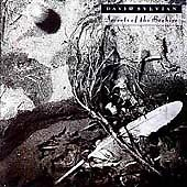 David Sylvian - Secrets of the Beehive (2003)
