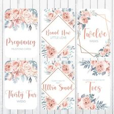 Pregnancy Milestone Cards, 4x6 Photo Prop, 40 Cards, Sweet Rose