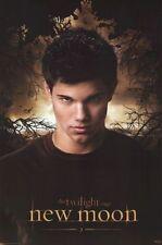 TWILIGHT New Moon Movie Poster - JACOB Black Full Size 24x36 ~ Taylor Lautner