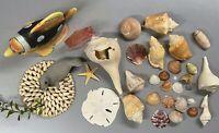 Large Lot Of Shells, Sea Life and Figurines Coast Beach Seashells Crafts Decor
