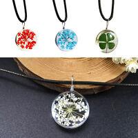 Transparente Kristall Ball Glas getrocknete Blume Halskette Anhänger Schmuck neu