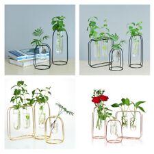 Glass Tube Flower Vase Garden Hydroponic Pot for Home Garden Decoration
