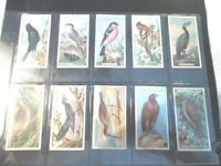 1923 Ogdens British Birds (cut outs) complete. set 50 cards Tobacco Cigarette