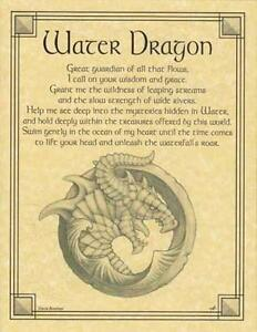Water Dragon Parchment-Like for Book of Shadows Page, Altar!