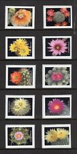 US 2019 Forever CACTUS CACTI Flowers Flowering Booklet Singles -FreeUSAShipping
