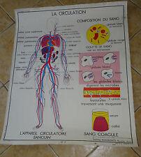 N°3 AFFICHE, CARTE SCOLAIRE LA CIRCULATION. LE COEUR EDITIONS ROSSIGNOL