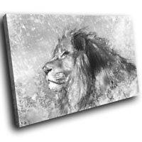 A222 Grey Lion Black White  Funky Animal Canvas Wall Art Large Picture Prints