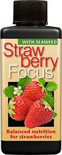 Strawberry Focus Nourriture De Plante-Nutriments Pour Fraise pineberry etc..100 ml