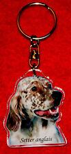 porte-cles chien setter anglais 1 dog keychain llavero perro schlusselring hund