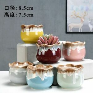 Selection of 6pcs Cactus Succulent Pots Ceramic Flower Plant pots Gloss Glaze 01
