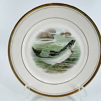 """Rare VTG Dresden Hand Painted Cabinet Plate Trout Fish Stream Signed R K Beck 9"""""""
