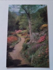 Old Postcard Rock Garden at White Crags Ambleside English Lakes   (A3)