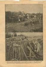 WWI Poilus Tombe Tranchée Grenade Crapouillot Lance-Fusée War 1915 ILLUSTRATION