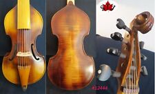 "Baroque style SONG maestro 7 string 14 3/4 ""viola da gamba #12444"