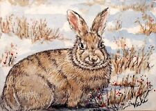 Bunny, Cottontail, Rabbit, Winter, Snow, Wildlife, Nature,  ACEO  by Vicki