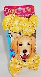 DOGGIE & ME Matching Scrunchie & Dog Collar Accessory Set New On Card Set 3