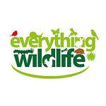 Everything Wildlife