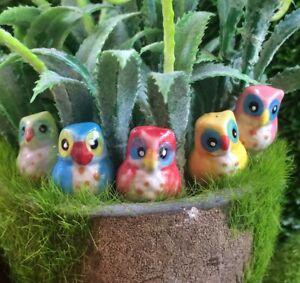 Dollhouse Miniature Tiny Owls Birds 5 Pcs Animal Ceramic Garden Decor Figurines