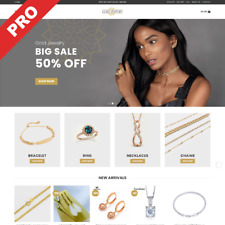 Jewelry Shop Turnkey Dropshipping Website Business All In One Ready Business