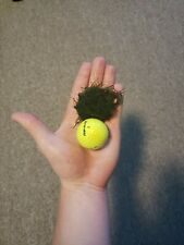 Java Moss Vesicularia Dubyana Starter Golf Ball Size