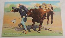 vintage COWBOY bucking bull SHARKEY postcard