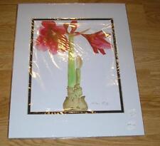 RED AMARYLLIS BULB GARDEN FLOWER IMPRESSIONISM MATTED ARTIST ORIGINAL ART PRINT