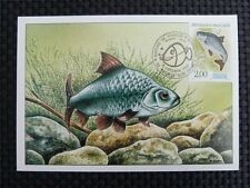 FRANCE MK FISCH FISCHE FISH FISHES MAXIMUMKARTE CARTE MAXIMUM CARD MC CM c1536