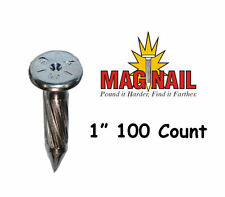 ChrisNik Mag Nail 1 Inch Survey Nail 100 Count