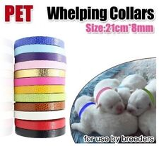 Clearance Sale - WHleping collars for Puppies and Kittens only $3 *FREE POSTAGE*