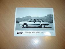PHOTO DE PRESSE ( PRESS PHOTO )  Austin Rover Montego 1.6 L  R0097
