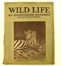 Wild Life nature magazine Douglas English March 1914 toad diver photos zoo