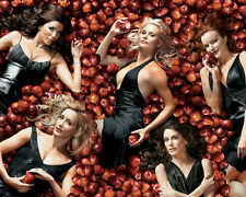 Desperate Housewives [Cast] (12770) 8x10 Photo