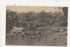 Natives & Cattle Bathing In River At Colombo Ceylon Vintage Postcard 674a