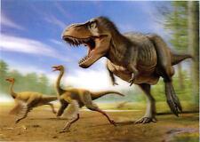 T- Rex hunting Struthiomimus - Dinosaur - 3D Lenticular Postcard Greeting Card