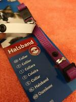 Cat Collar With Address Tag  ID Collar Red Black Purple & Blue