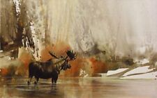 Moose at First Morning Light by Morten Solberg Wildlife SN LE Lithograph Paper
