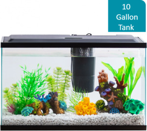 Aquarium Starter Kit With LED Lighting Aqua Water Culture 10-Gallon Thank Fish