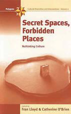 Secret Spaces, Forbidden Places: Rethinking Culture (Polygons: Cultural Diversit