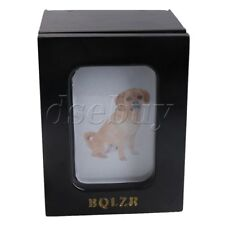 Black Wood Pet Urn Memorial Keepsake Box with Photo Frame for Dog Cat